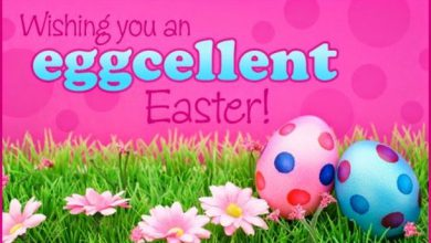 Happy Easter Everyone Message 390x220 - Happy Easter Everyone Message