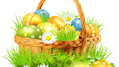 Whatsapp Video Ostern 390x220 - Whatsapp Video Ostern