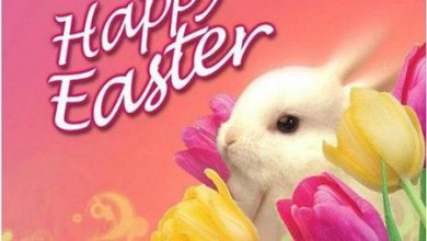 easter greeting card sayings 390x220 - easter greeting card sayings