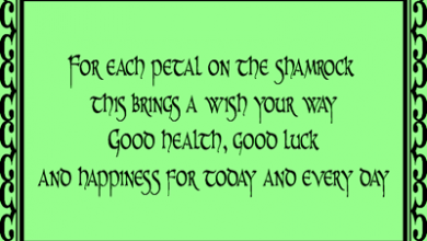 Funny Irish Happy Birthday Wishes 390x220 - Funny Irish Happy Birthday Wishes