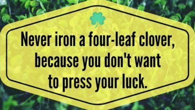 Funny St Patricks Day Sayings For Kids 390x220 - Funny St Patricks Day Sayings For Kids