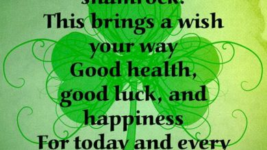 Funny St Pattys Day Quotes 390x220 - Funny St Patty's Day Quotes