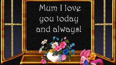 Happy Mothers Day Message For My Mom 390x220 - Happy Mothers Day Message For My Mom