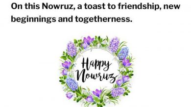 Happy Norooz In Farsi 390x220 - Happy Norooz In Farsi