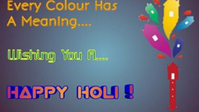 Holi Festival Information In English 390x220 - Holi Festival Information In English