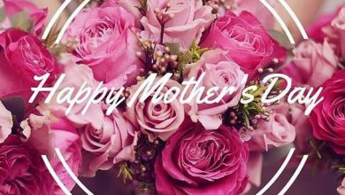 Mothers Day Messages For Cards For Friends 390x220 - Mothers Day Messages For Cards For Friends