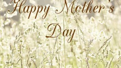 Mothers Day Quotation 390x220 - Mother's Day Quotation