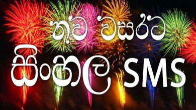 Sinhala and Tamil New Year Eve 1 390x220 - Sinhala and Tamil New Year Eve