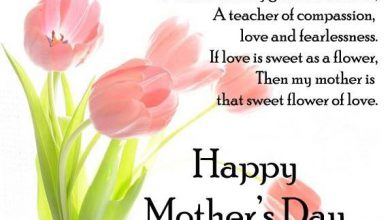 Special Words For Mom On Mothers Day 390x220 - Special Words For Mom On Mother's Day
