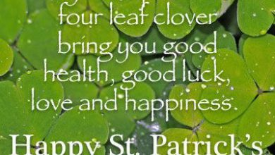 St Paddys Day Quotes 390x220 - St Paddy's Day Quotes
