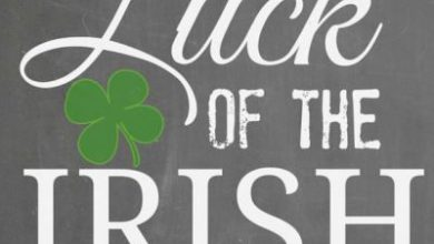 St Patrick Day Friendship Quotes 390x220 - St Patrick Day Friendship Quotes