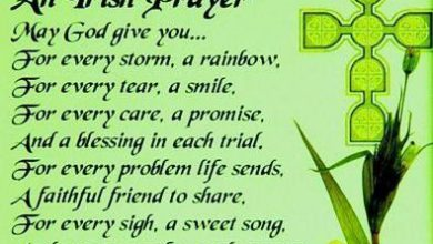 St Patricks Day Drinking Quotes 390x220 - St Patrick's Day Drinking Quotes