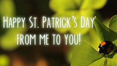 St Patricks Day Sayings 1 390x220 - St Patrick's Day Sayings