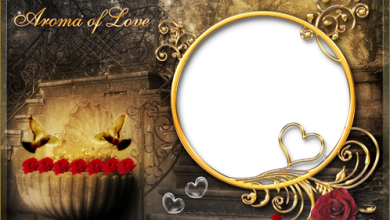 Aroma of Love photo frame 390x220 - Aroma of Love photo frame