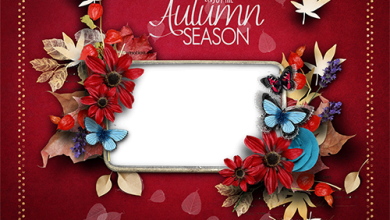 Enjoy the Autumn season photo frame 390x220 - Enjoy the Autumn season photo frame