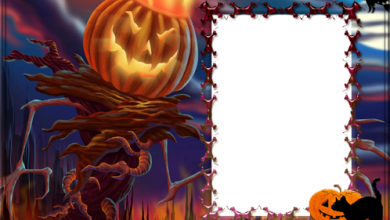 Halloween frame with a witch sitting on a pumpkin photo frame 390x220 - Halloween frame with a witch sitting on a pumpkin photo frame