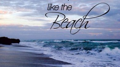 Family Summer Quotes image 390x220 - Household Summer season Quotes picture