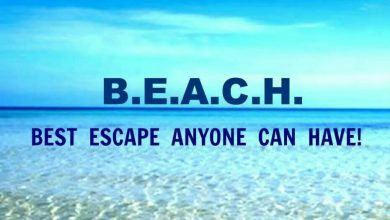 Funny Summer Quotes image 390x220 - Humorous Summer season Quotes picture