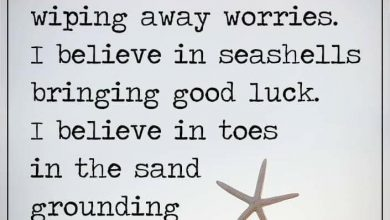 Getting Ready For Summer Quotes image 390x220 - Getting Prepared For Summer season Quotes picture