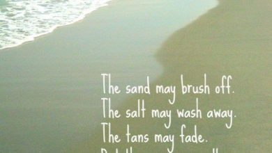 Late Summer Quotes image 390x220 - Late Summer season Quotes picture