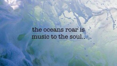 Short Beach Quotes image 390x220 - Quick Seashore Quotes picture