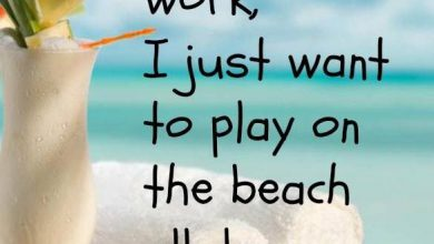 Summer Breeze Quotes image 390x220 - Summer season Breeze Quotes picture