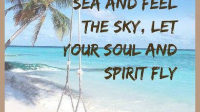 Summer Hair Quotes image 390x220 - Summer time Hair Quotes picture