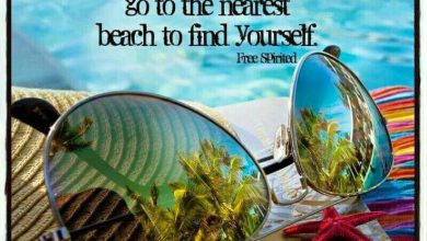 Summer Inspirational Quotes image 390x220 - Summer season Inspirational Quotes picture