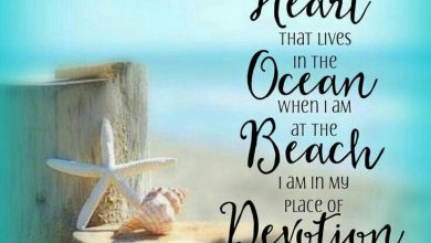 Summertime Sayings image 390x220 - Summertime Sayings picture